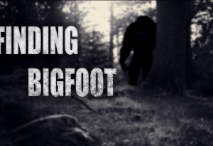 Finding Bigfoot (Beta Test 2)